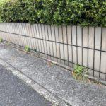 道路際と塀の隙間に生えるしつこい雑草からこうして開放されました